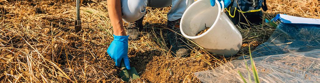 Soil Inspection